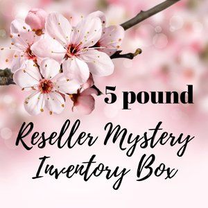 5 lb. Reseller Mystery Inventory Box